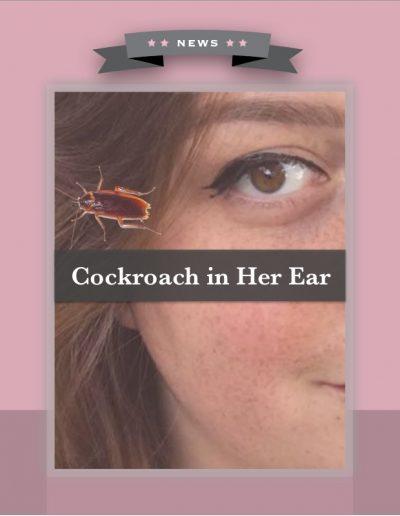 Ear Cockroach