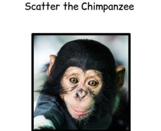 How We Used Elvis' Chimpanzee to Work on Self-determination Skills